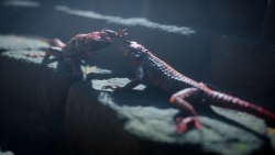 Fighting Lizards _ Improved DOF is coming